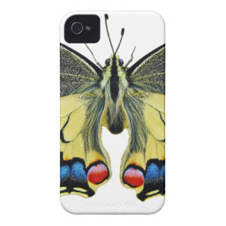 Butterfly Insect Wing Lepidoptera Nature Bright iPhone 4 Case