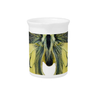 Butterfly Insect Wing Lepidoptera Nature Bright Pitcher