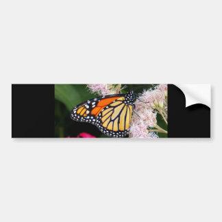 Butterfly Kiss Bumper Stickers