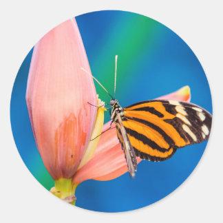 Butterfly Landing on Purple Flower Round Sticker
