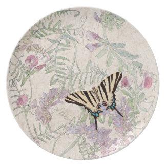 Butterfly Lathyrus Vetch Wildflower Flowers Plate