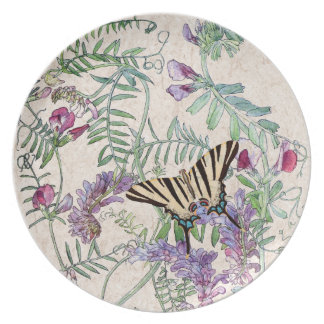 Butterfly Lathyrus Vetch Wildflower Flowers Plate