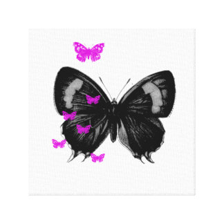 butterfly love canvas prints