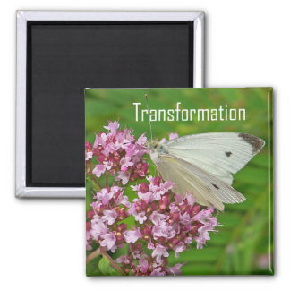 Butterfly Magnet, Transformation Square Magnet