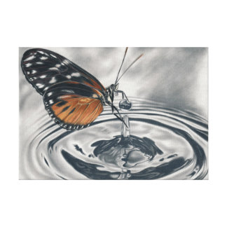 Butterfly meets water drops gallery wrapped canvas