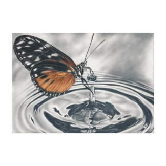 Butterfly meets water drops canvas prints