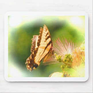butterfly mimosa tree mouse pad