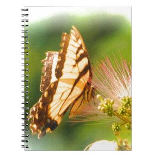 butterfly mimosa tree notebooks
