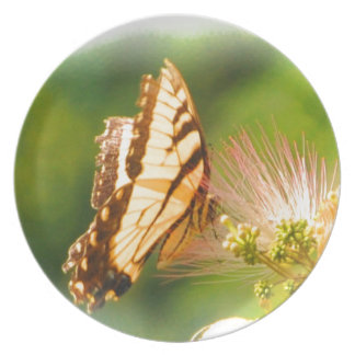 butterfly mimosa tree plate