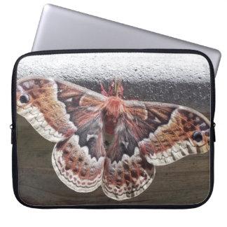 Butterfly/moth laptop sleeve