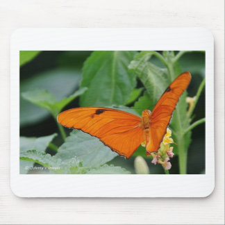 Butterfly Mouse Pads