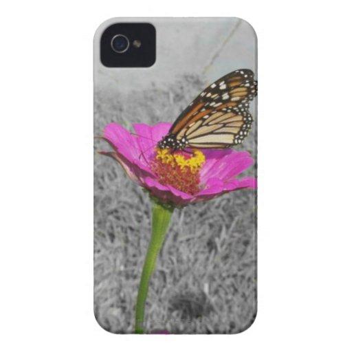 Butterfly N Zinnia Blackberry Bold Case