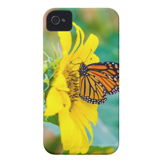 Butterfly on a Sunflower iPhone 4 Case