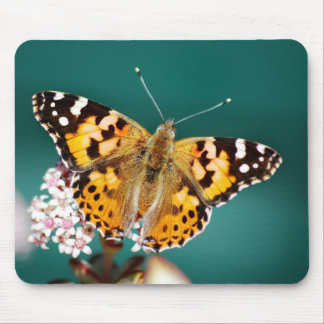 Butterfly on a wisp mouse pad