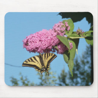 Butterfly on Butterfly Bush Mouse Pad