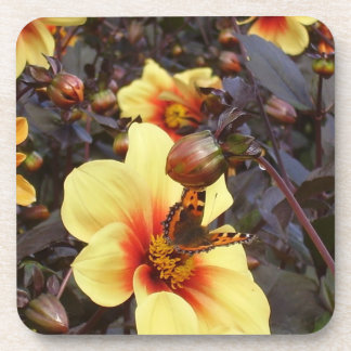 Butterfly on Dahlia Drink Coaster
