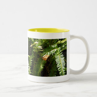 Butterfly on Fern Two-Tone Coffee Mug