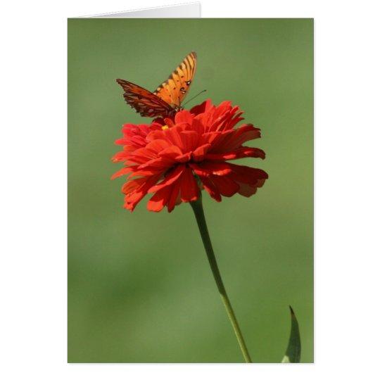 Butterfly on flower card