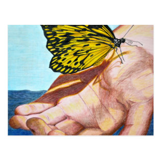 Butterfly on Hand Postcard