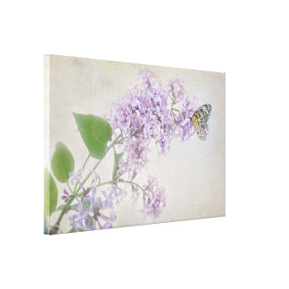 butterfly on lilac blossom canvas print