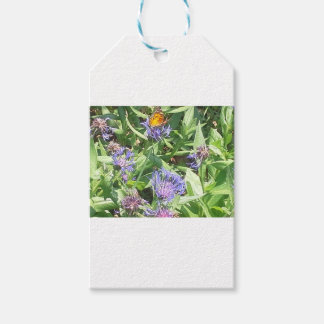 Butterfly on Purple Coneflower Gift Tags