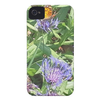 Butterfly on Purple Coneflower iPhone 4 Case-Mate Case