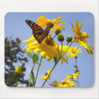 Butterfly on the Sunflower mouse pad