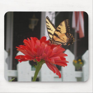 butterfly on zinnia mouse pad