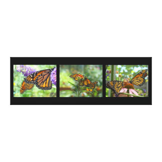 Butterfly Panel Canvas prints Monarchs Butterflies
