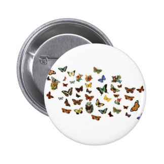 Butterfly Parade Pinback Buttons