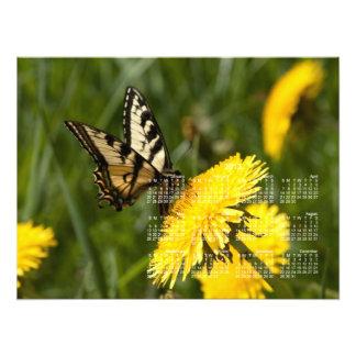 Butterfly Perch 2013 Calendar Photo