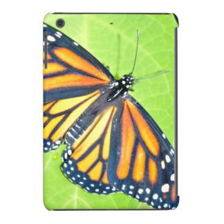 Butterfly - Phone and Tablet Cover
