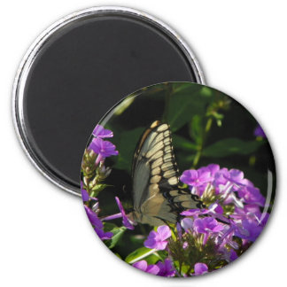 Butterfly Photo Gift 6 Cm Round Magnet
