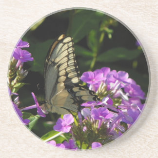 Butterfly Photo Gift Beverage Coasters