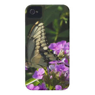 Butterfly Photo Gift Case-Mate iPhone 4 Cases