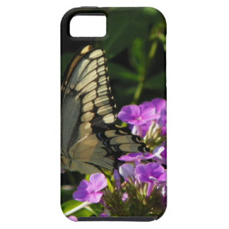 Butterfly Photo Gift iPhone 5 Covers