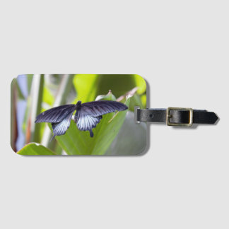 Butterfly Photo Luggage Tag