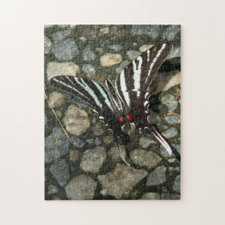 Butterfly Photo Puzzle. Jigsaw Puzzles