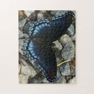 Butterfly, Photo Puzzle. Puzzles