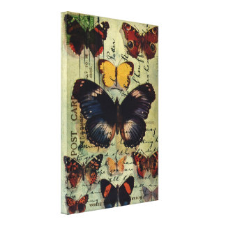 Butterfly Postcard Gallery Wrap Canvas