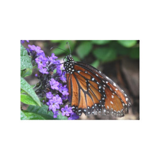 Butterfly Praise Stretched Canvas Prints