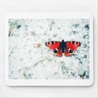 Butterfly prints Butterfly prints Mouse Pad