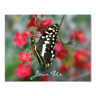 Butterfly Products 11 Cm X 14 Cm Invitation Card