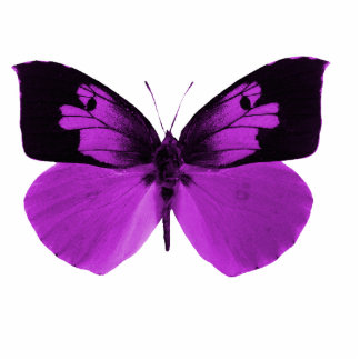 butterfly sculptured key chain acrylic cut outs