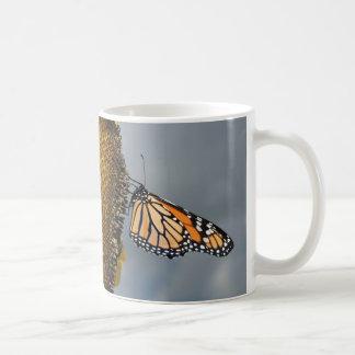 butterfly shy mugs