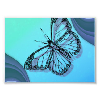Butterfly Silhouette Photo