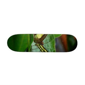 Butterfly Skateboard Decks
