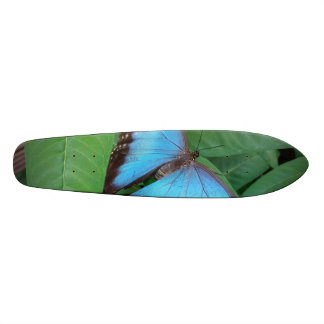 Butterfly Custom Skate Board