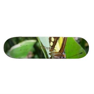 Butterfly Skate Board Deck