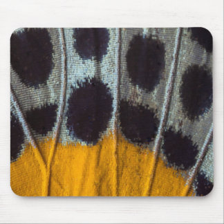 Butterfly spotted wing detail mouse pad